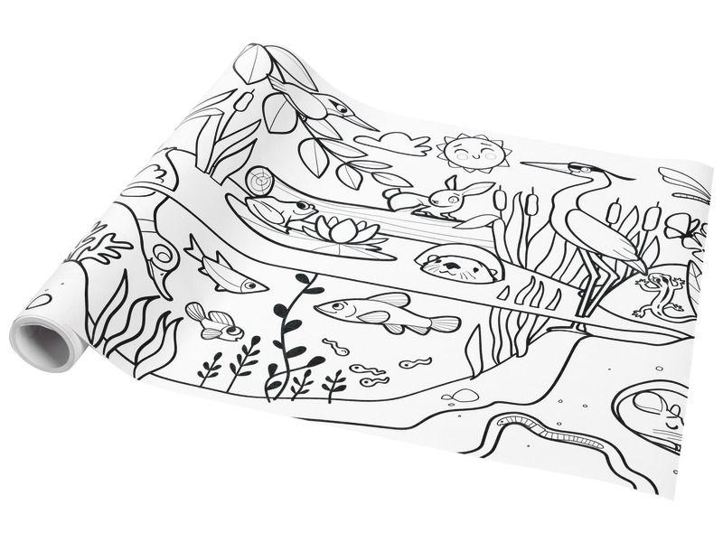 Fresque A Colorier Ecosysteme